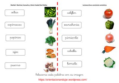 follower - English-Spanish Dictionary - WordReference.com