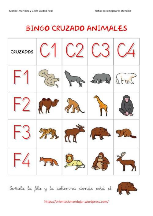 bingo animales 4x4-1