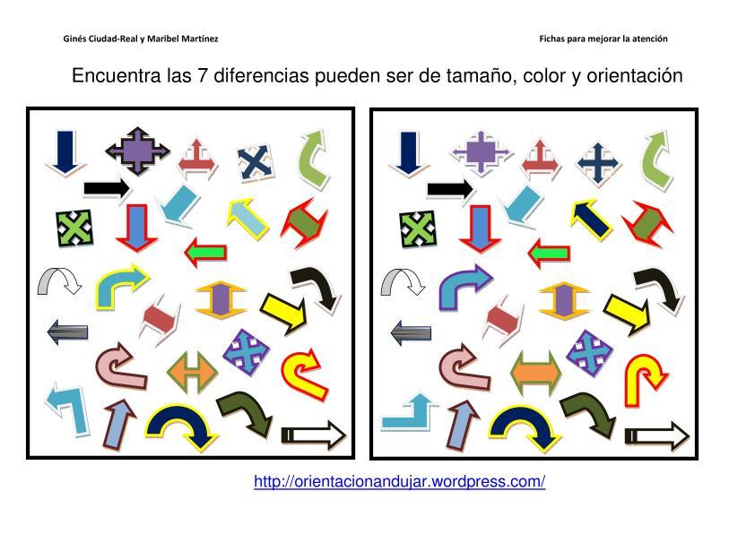 Ayuda al estudio ejercicios y orientaciones para mejorar tu concentraci n - Colores para la concentracion ...